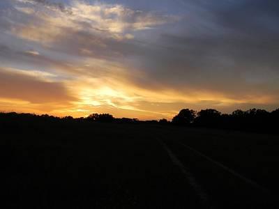 Sunset Over Golden Ocala 2 Original
