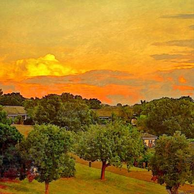 Sunset Over Orchard - Square Art Print