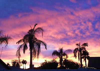 Photograph - Sunset Over Palms by R B Harper