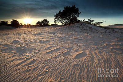 Sunset Over Sand Dune Art Print by Olha Rohulya