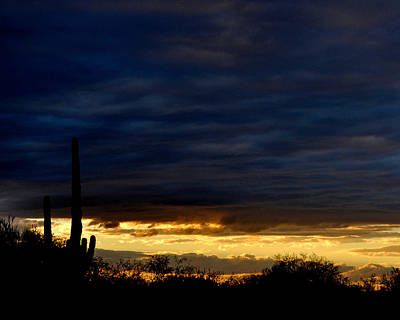 Sunset Over Sonoran Desert Art Print by Jon Van Gilder