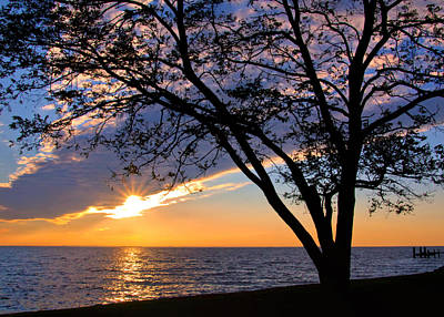 Photograph - Sunset Over The Bay by Carolyn Derstine