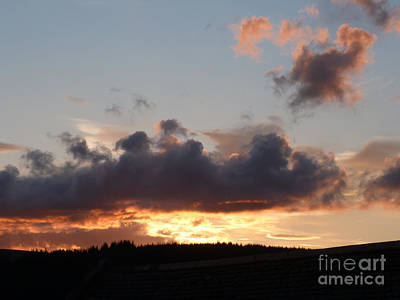 Photograph - Sunset Over The Forest by Phil Banks