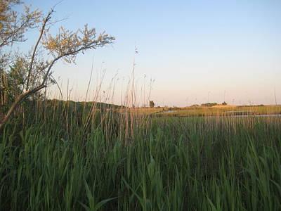 Sunset Over The Marshlands Art Print