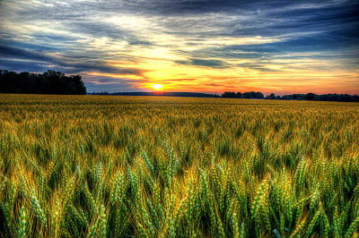 Photograph - Sunset Over The Ohio Wheat by Michael Eingle