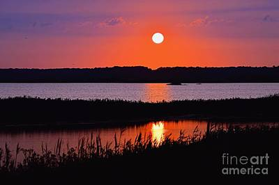 Photograph - Sunset Over The Wetlands by Sharon Woerner