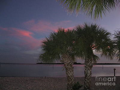 Charlotte Photograph - Sunset Palms 2 by Frederick Holiday