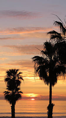 Art Print featuring the photograph Sunset Palms by Charles Ables
