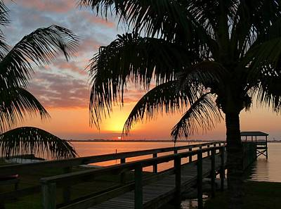 Photograph - Sunset Palms by Elaine Franklin