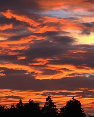 Sunset Art Print by Pamela Walton