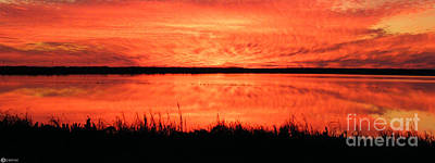 Photograph - Sunset Panarama Lacassine by Lizi Beard-Ward