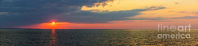 Animal Portraits - Sunset panorama over Atlantic ocean by Elena Elisseeva