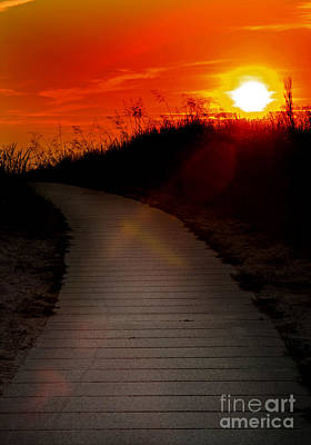 Sunset Path Art Print by Randall  Cogle