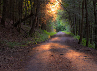 Wall Art - Photograph - Sunset Path by Scott Hafer