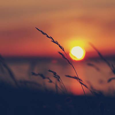 Photograph - Sunset by Patrick Horgan