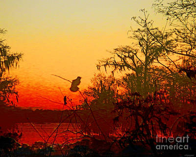 Digital Art - Sunset Perch Lake Martin Louisiana by Lizi Beard-Ward
