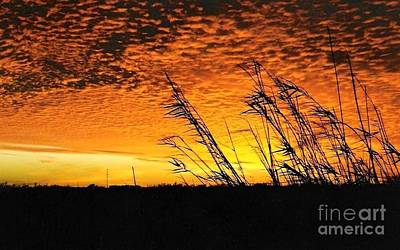 Photograph - Sunset Post Hurricane Rita by Michael Hoard
