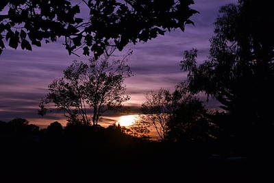 Photograph - Sunset Purple Sky by Saifon Anaya