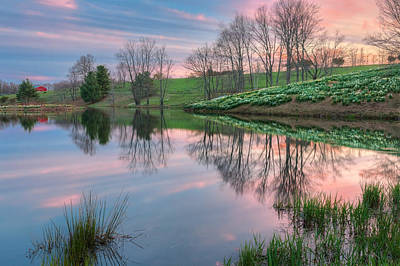 Springflowers Photograph - Sunset Reflections by Bill Wakeley
