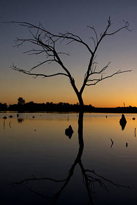 Photograph - Sunset Riverlands West Alton Mo Portrait Dsc06670 by Greg Kluempers