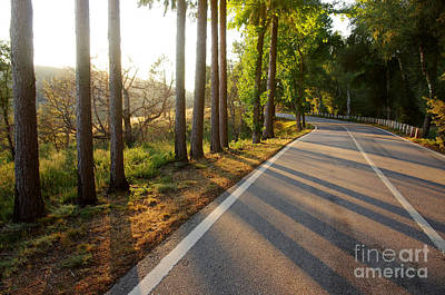 Spring Scenery Photograph - Sunset Road by Carlos Caetano