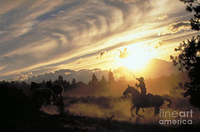 Horse Back Riding Photograph - Sunset Round-up by Ron Sanford