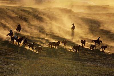 Running Horse Photograph - Sunset Run by Libby Zhang