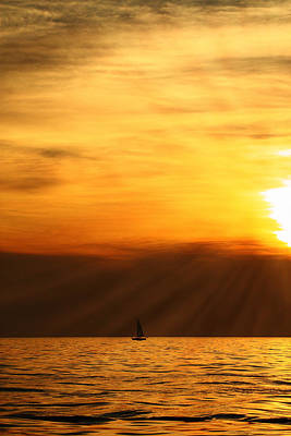 Photograph - Sunset Sail by Coby Cooper