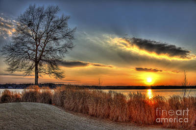 Sunset Sawgrass On Lake Oconee Art Print by Reid Callaway