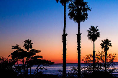 Photograph - Sunset Silhouette by Ben Graham