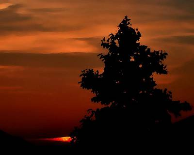 Photograph - Sunset Silhouette by Deena Stoddard