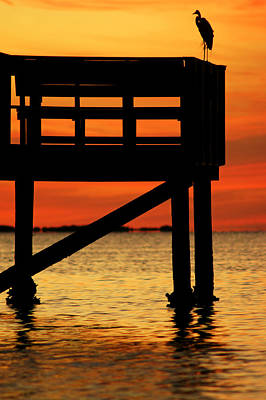 Photograph - Sunset Silhouettes At Crystal Beach Pier V by Daniel Woodrum