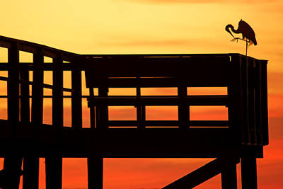 Photograph - Sunset Silhouettes At Crystal Beach Pier Vi by Daniel Woodrum