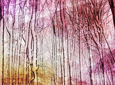 Sunset Snow Twigs Art Print