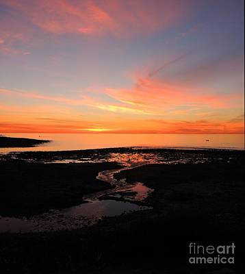 Field River, Hallett Cove Art Print