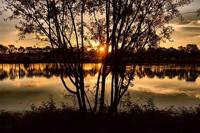 Photograph - Sunset Through The Trees by Patricia Strand