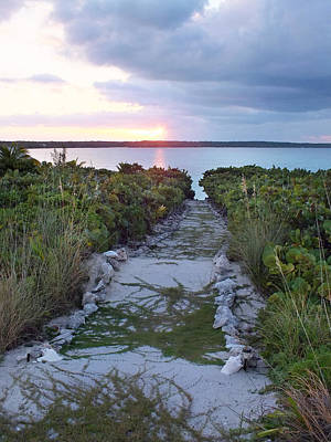 Photograph - Sunset Time Along A Path To Bottom Harbour Sound by Duane McCullough