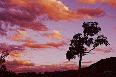Digital Art - Sunset Tree Landscape Art by Ann Powell