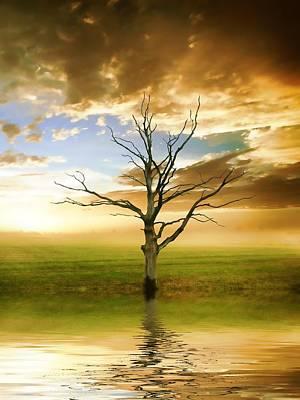 Reflecting Water Mixed Media - Sunset Tree by Sharon Lisa Clarke