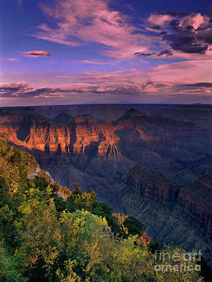 Photograph - Sunset View From North Rim Lodge Grand Canyon National Park  by Dave Welling