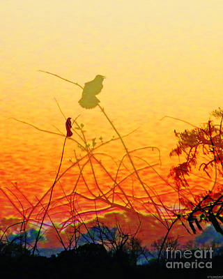 Digital Art - Sunset Warblers Lake Martin Louisiana by Lizi Beard-Ward