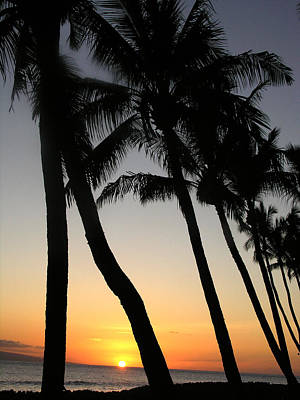Photograph - Sunset West Coast Of Maui by Robert Lozen