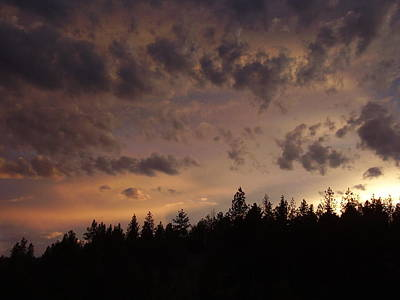 Photograph - Sunset by Yvette Pichette