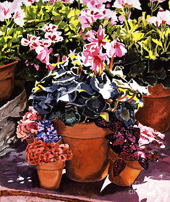 Sunshine And Flowerpots Print by David Lloyd Glover