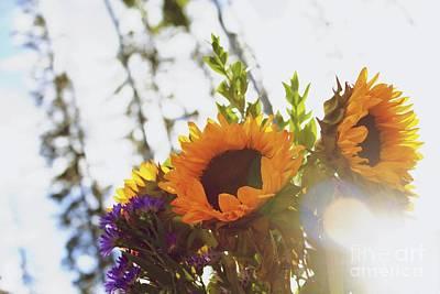 Sunflower Photograph - Sunshine And Sunflowers by Alanna DPhoto