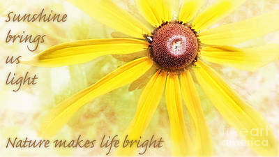 Photograph - Sunshine Bright  by Peggy Franz