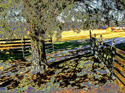 Art Print featuring the photograph Sunshine Down On The Farm by Diane Miller