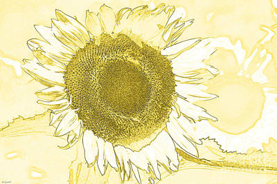 Monotone Drawing - Sunshine Flower by Diana  Tyson
