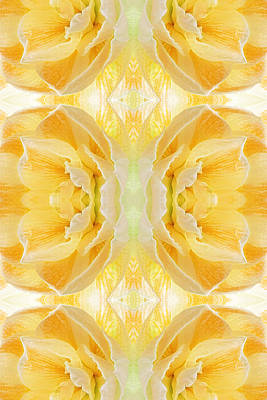 Amarylis Photograph - Sunshine Mosaic -  Vertical by Gill Billington