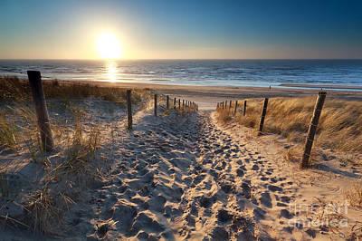 Zandvoort Photograph - sunshine over path to beach in North sea by Olha Rohulya